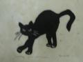 Katt i vått gress